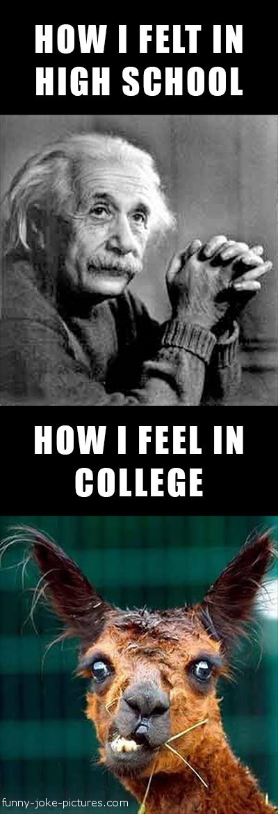 View joke - How I felt in high school. How I feel in college